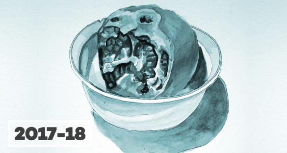 2018-02-17_disegno